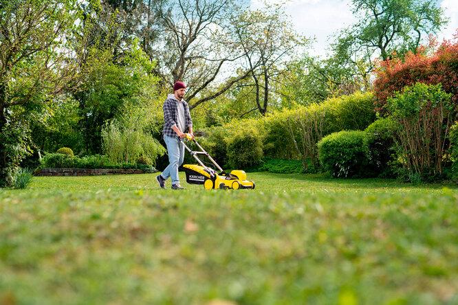 Зеленая миля: как вырастить идеальный газон иправильно заним ухаживать