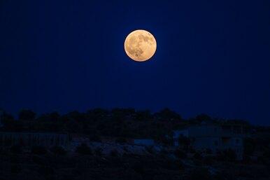 Растущая Луна негативно влияет насон мужчины — исследование