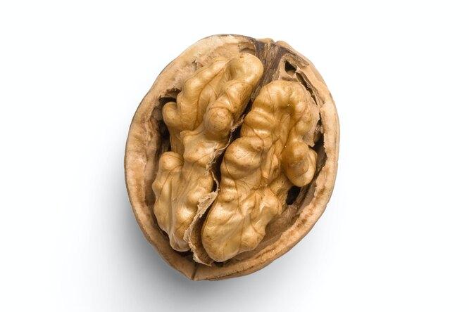 В России вывели грецкий орех, который можно легко расколоть рукой