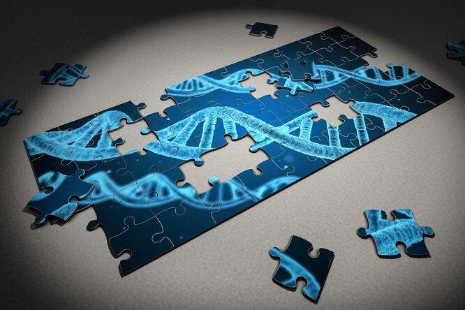 У россиян появятся цифровые генетические паспорта