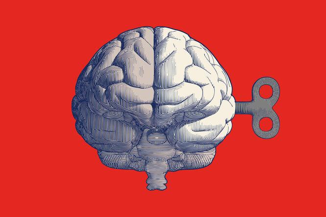 Как улучшить свою память: 9 привычек, которые могут помочь