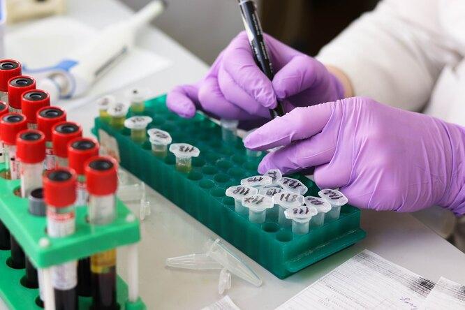 Как образуется рак — взгляд генетиков