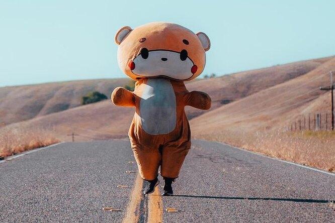 Американец вкостюме медведя дошел изЛос-Анджелеса вКалифорнию