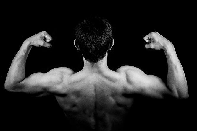 Биологи нашли способ замедлить старение мышц