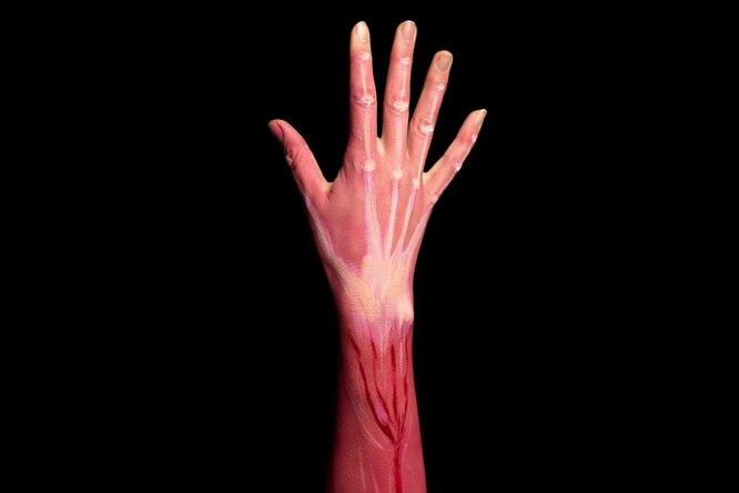 Изобретены искусственные мышечные волокна, изкоторых можно делать бронежилеты