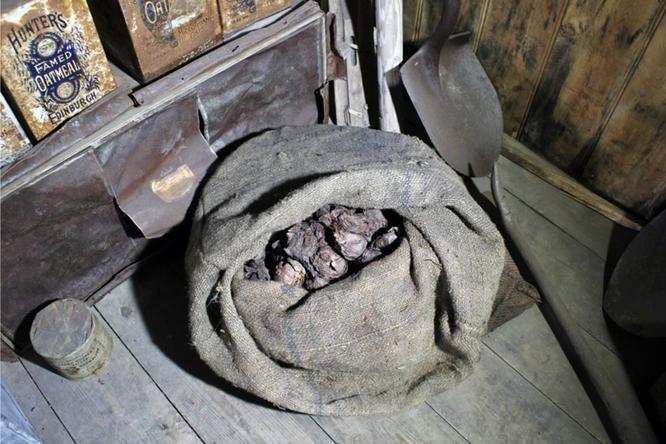 Что стало слуком, пролежавшим 100 лет вАнтарктиде?