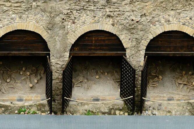 Ярость Везувия: каким был последний день Помпеи