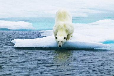 Что творится спогодой: 5 фактов, которые нужно знать осовременном климате