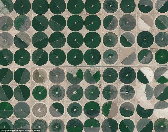 Ирригационные сооружения в пустыне. Саудовская Аравия.