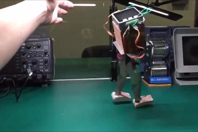 Как постоить робота за100 дней