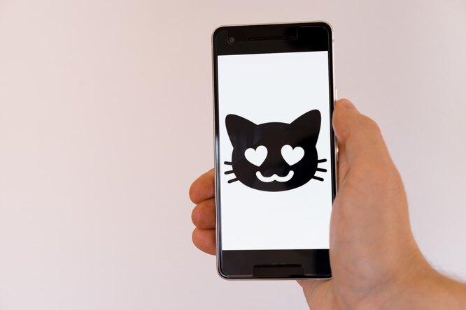 В США запущено приложение Schmooze, находящее пару помемам