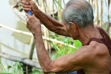 Можно ли сохранить мышечную массу впожилом возрасте?