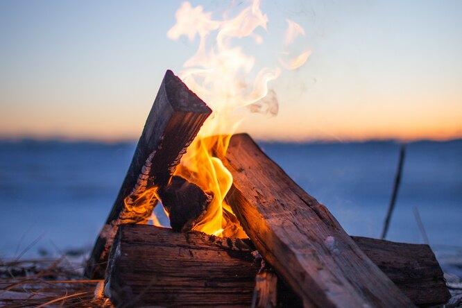 Когда люди начали использовать огонь? Выяснили ученые