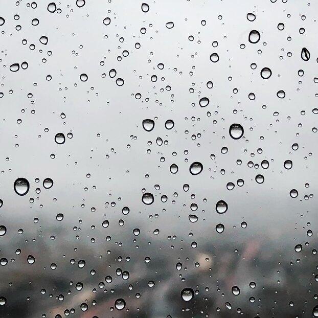 В городах Центральной России ожидается дождливый август — синоптик
