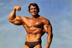 Советы отШварценеггера: как развить мускулатуру героя боевика