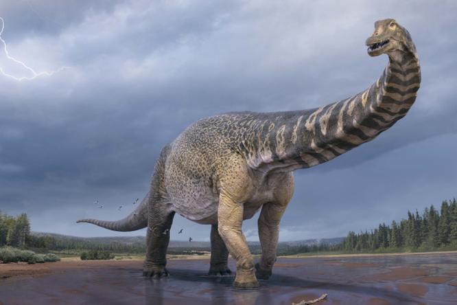 В Австралии обнаружили останки крупнейшего динозавра наконтиненте