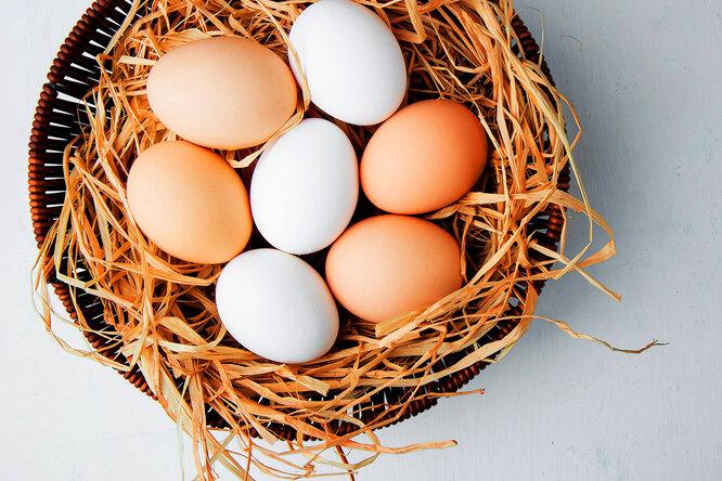 Коричневые ибелые яйца: есть ли между ними разница