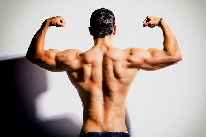 Почему тренировка широчайших мышц спины заслуживает особого внимания?