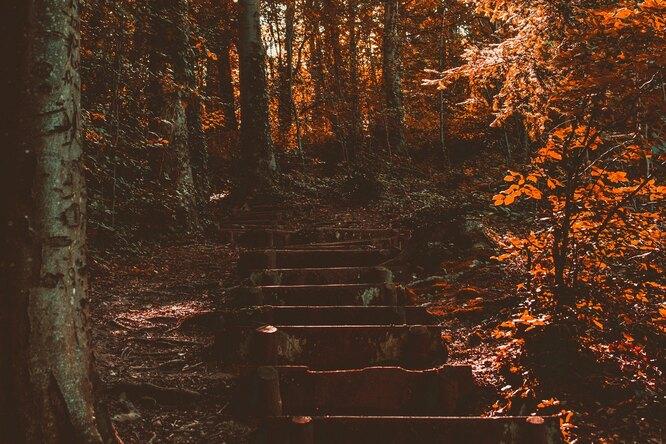Как метеочувствительным людям улучшить свое состояние осенью?