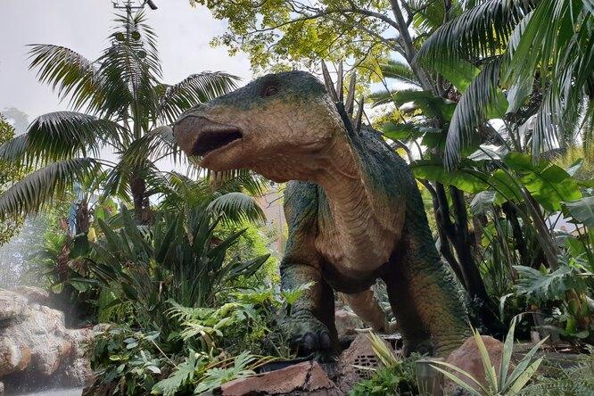 Мальчик решил посмотреть настатую динозавра инашел внутри труп мужчины