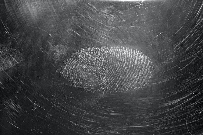 На древней посуде остался отпечаток возрастом 5000 лет