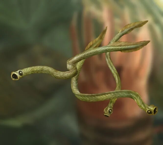 <br />Конодонты. Хордовые, зародившиеся в позднем кембрии, около 500 миллионов лет назад. Могли жить на любой глубине и выдерживали самую разную температуру воды, благодаря чему распространились по всей планете. Известно около 1500 видов конодонтов, от донных падальщиков до активных хищников. Умудрились пережить даже трилобитов, проскочив в триасовый период.<br />&nbsp;