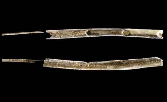 <br />И еще пара слов об искусстве: древнейшими музыкальными инструментами на сегодняшний день являются костяные флейты, найденные в верховьях Дуная на территории южной части Германии. Одна флейта сделана из кости мамонта, другая &ndash; из кости птицы. Профессор Ник Конрад оценивает свою находку в 42 000 &ndash; 43 000 лет. Вероятно, люди пришли в эту область как раз перед наступлением глобального похолодания, и это место использовалась в качестве базы для отдыха и социальных коммуникаций.<br />&nbsp;