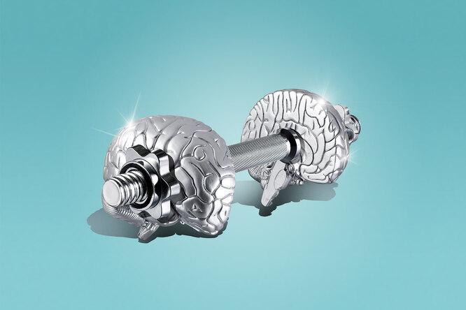 Мышцы всё помнят: как эффект мышечной памяти помогает нам возвращаться вформу