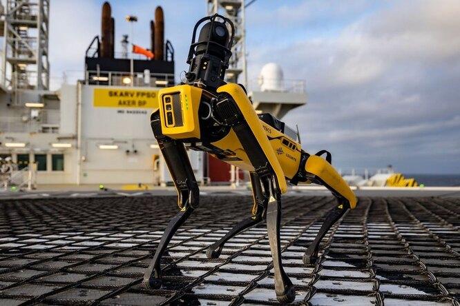 За что робопса Boston Dynamics уволили изполиции Нью-Йорка