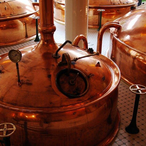 Ученые научились извлекать белок изостатков пива