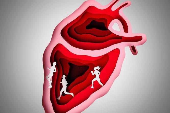 Меньше соли, больше здоровья: 7 продуктов, которые защитят сердце