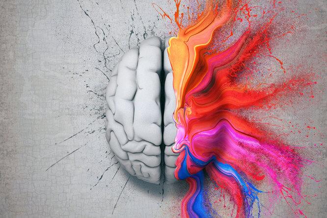 Почему висследования неберут левшей: что говорят нейробиологи