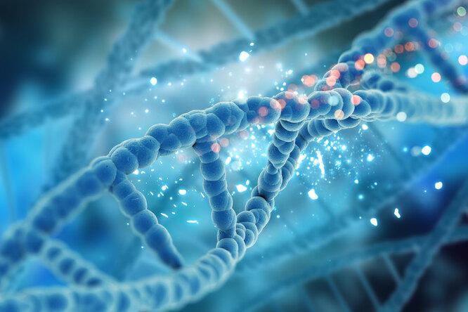В российских семьях выявили мутацию, которая приводит ксиндрому Цельвегера