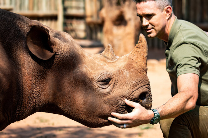 Hublot защищает популяцию носорогов ипредставляет новую версию Big Bang Unico SORAI
