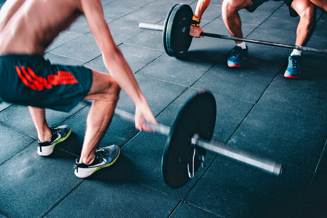 Что лучше: тренажёры или свободные веса?