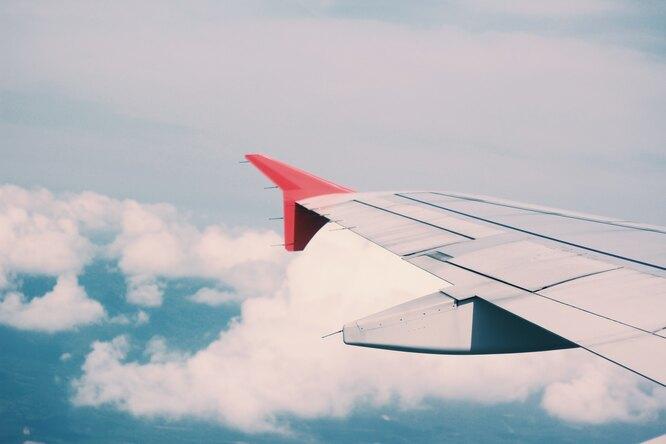 Россия объявила овозобновлении авиасообщения сразу посеми направлениям