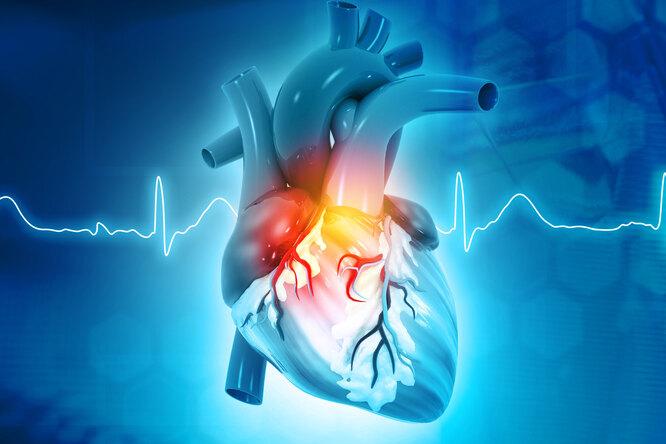 10 шагов кздоровому сердцу, которые стоит сделать сегодня