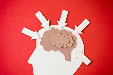 Как изучение иностранного языка влияет нанаш мозг?