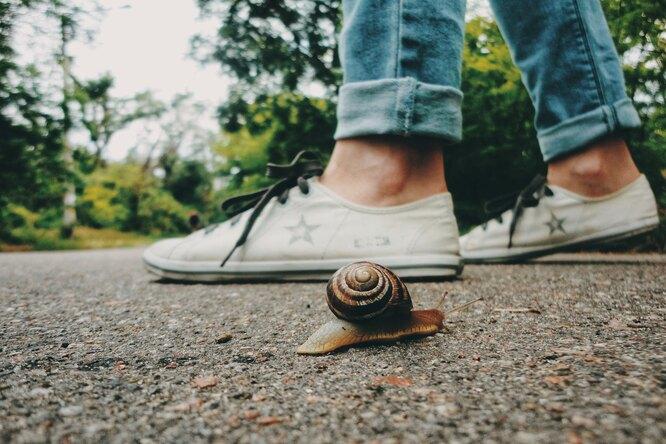 Правда ли, что медленная ходьба приближает старость?