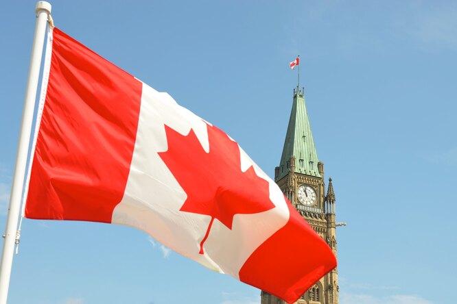 В Канаде голый депутат помочился вкофейную чашку входе онлайн-заседания парламента