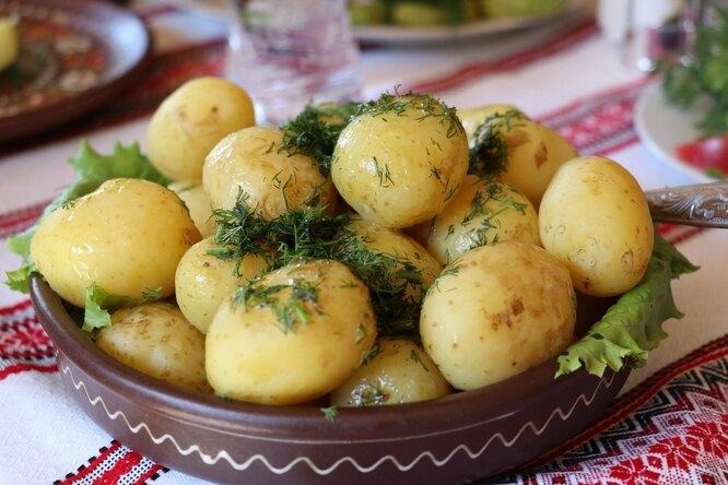 5 причин, покоторым нестоит исключать картофель изздорового рациона
