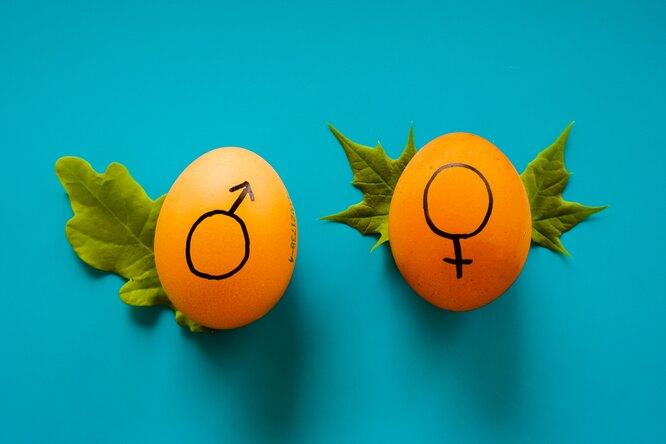 Десятиклассники оценили главные женские качества