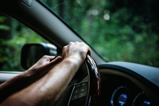 В российских школах могут возобновить уроки вождения