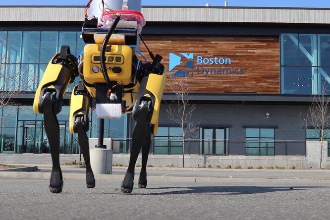 Как изобретатель научил робота-собаку Boston Dynamics «справлять нужду» пивом