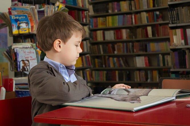 Ученые: причина трудностей обучения большинства школьников — низкая самостоятельность