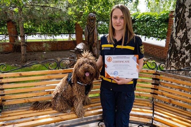 Украинская собака-психолог получила официальный сертификат терапевта