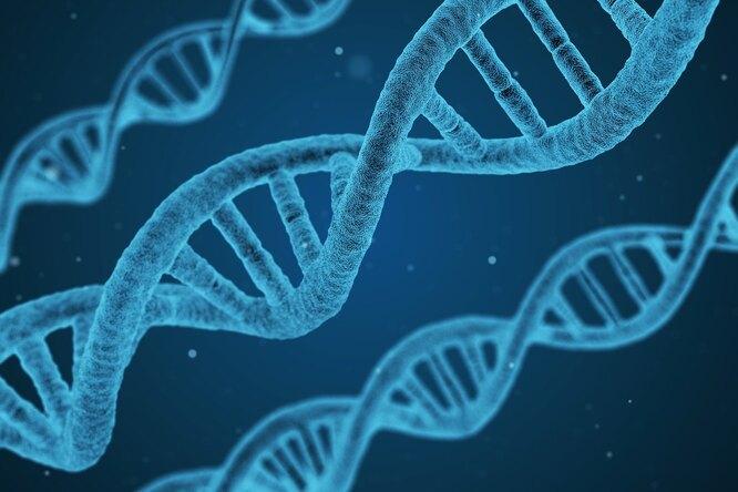 Наука опровергла: 6 мифов оздоровье, вкоторые мы верим