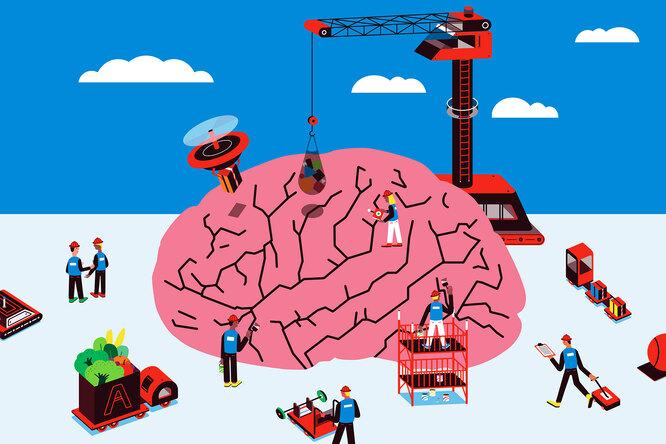 Что съесть наобед, чтобы мозг работал лучше?