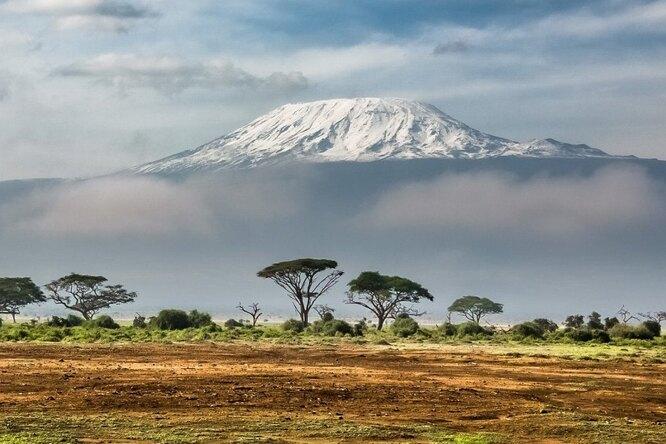 Как вАфрике отыскали четвертую ветвь человечества